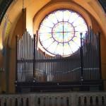 Nowy organista
